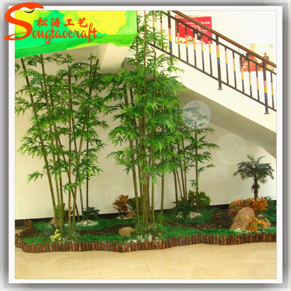 Hot is venda plantas decorativas de bambu de bambu da - Bambu planta exterior ...