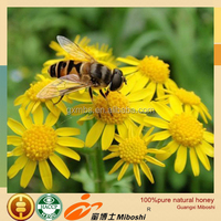 professional manufacturer export 100%pure natural fresh honey