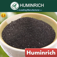 Huminrich Shenyang 70HA+10K2O K-Humic Acid Fertilizer For Onion