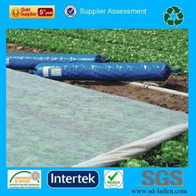 UV resistance Polypropylene Spun bonded non-woven for crop cover, crop protection