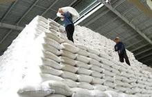 [ HOT PRODUCT] Fragrant Jasmine rice 5% BROKEN_KHANH TAM RICE FACTORY