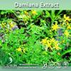 Natural Damiana Extract,Damiana Extract Powder,Damiana Leaf Extract Powder 4:1 10:1 20:1