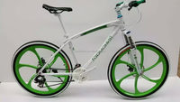 Cheap economic mountain bicycle/bike/cycle (TF-MTB-037)