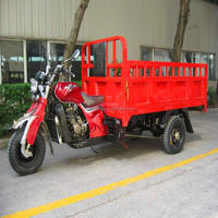 Promotional Attractive motorcycle tricycle 3 wheel 250cc