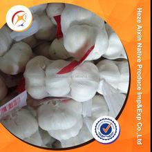 Certified Organic Fresh Garlic