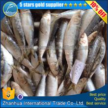 Buena del precio sardina de pescado para la venta todo el tamaño