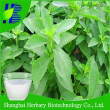 100% pure nature dried stevia leaves