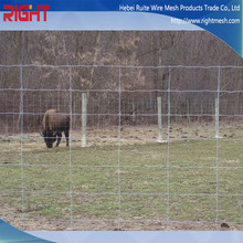 Alibaba China Good Price Field Metal Cattle Fence