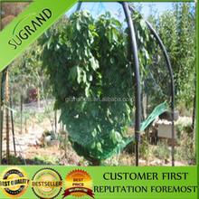 Uccello/cat rete per la protezione frutteti con 100% hdpe nuovo
