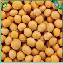 organic soya bean,Chinses organic soja bean,soybean refined soybean oil
