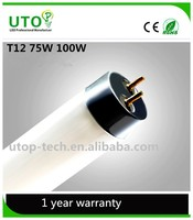 high quality t12 fluorescent lamp lumens
