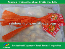 Chinese best quality fresh yellow baby mandarin orange 35mm~55mm