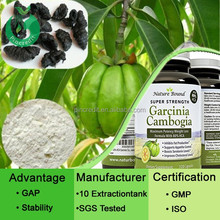 Buy Garcinia Cambogia Extract/Organic Garcinia Cambogia Extract/Plant Extract Garcinia Cambogia Extract Powder