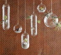 Stocked different types hanging glass vase