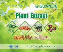 High quality 100% nature pure capsaici powder