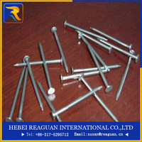 common zinc-plated iron nails with round head