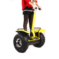 XinLi Electric Chariot, Two Wheels Self Balancing Scooter Copy X2, Stand Scooter PT EC24