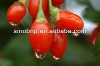 BNP Supply 100% Goji Concentrate Juice,organic goji juice Brix 15%, 30%