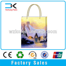 Custom recyclable shopping Package plastic bag for gift