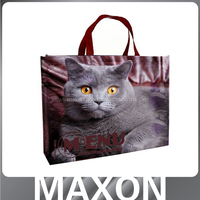 Guangdong best quality!!! non-woven polypropylene tote bag for women