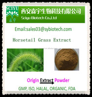 7% Silica Horsetail Grass Extract