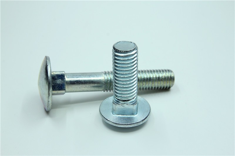 carriage bolt 6