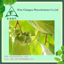 High quality Pygeum Africanum Extract 2.5%-13% Total Sterols