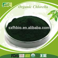 Orgánica Chlorella en Polvo /Pastilla
