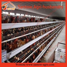 Top grade new arrival chicken cages for sale with good design