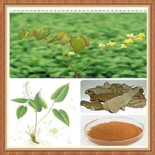 epimedium herb extract powder/epimedium extract manufacturers/epimedium extract icariin 40%
