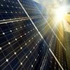220-310W Mono solar panels USD0.48/Watt TUV MSC CE CEC
