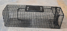 laboratory animal cages