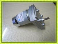 dc motor with gear head