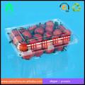 Aceitar a ordem personalizada e tipo de bandeja de recipientes de plástico de morango