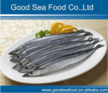 Frozen pacific saury whole round