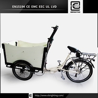 women trike cargo electric vehicle BRI-C01 three wheel tricycle with carriage for sale