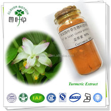 Curcumin 10% ISO Certificated Factory Supply Turmeric Extract