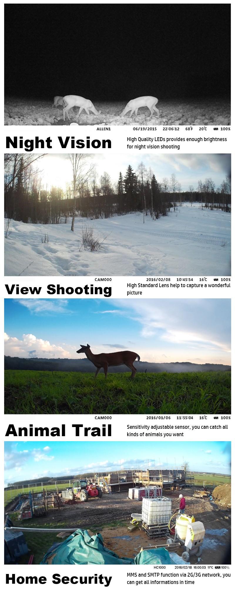 Wholesale 12MP HD Mini Night Vision Infrared MMS SMTP 3G Wildlife Hunting Trail Camera