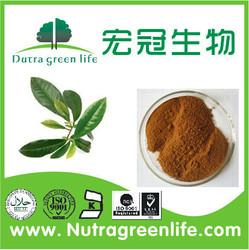Green Tea Extract/Catechins: 20%-98%,Tea polyphenol 40%-98%, EGCG: 30%-98%, Caffeine: 0.5%-5%