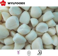 high quality frozen garlic cloves