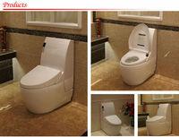 Bathroom Ceramic Toilet with one piece toilet soft close