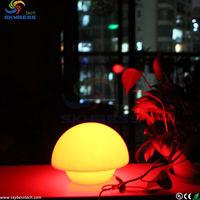 Flashing decorate lamp&led furniture decorative