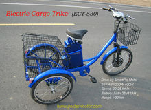 cargo motor trike/electric recumbent trike/disabled trike