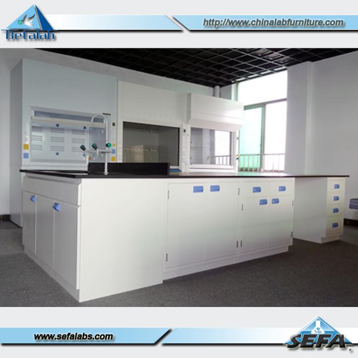 Laboratory Furniture,Lab Chemistry Fume Hood - Buy Chemistry Fume Hood ...