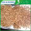/product-gs/pet-food-suppliers-nutrient-mealworms-fish-feed-tenebrio-molitor-pond-fish-organic-mealworm-60209334094.html