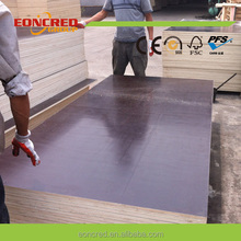 E2 Glue Brown Film Faced Plywood,Marine Plywood for Construction Shuttering Type