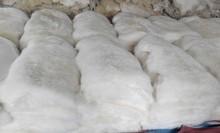 Por mayor de China blanco placa de piel de conejo