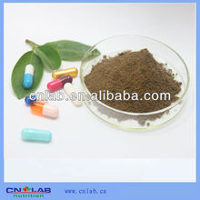 GMP/Haccp/ISO9001 Factory Provide Best Natural Tribulus Terrestris 80% Saponins