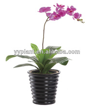 House of Silk Flowers Artificial mini decorative houses