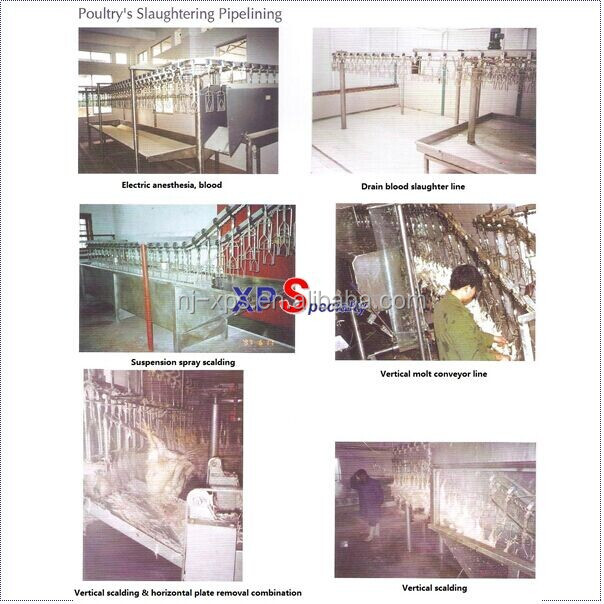 Poultry processing machine or machine for cleaning and sterilizing of poultry cage